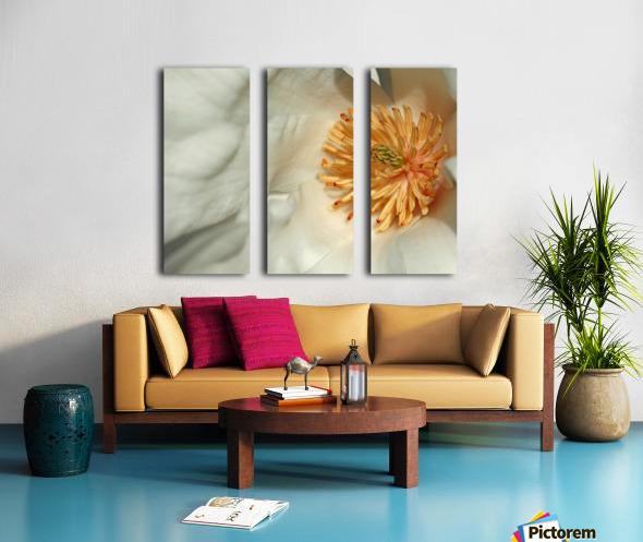 Magnolia Center Split Canvas print