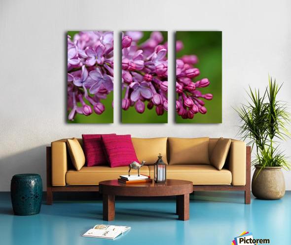 Fragrance Of Spring Split Canvas print