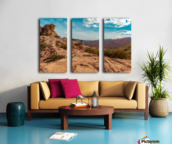 On Top Of The World Split Canvas print