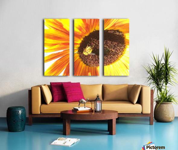 Bumblebee on Sunflower Split Canvas print