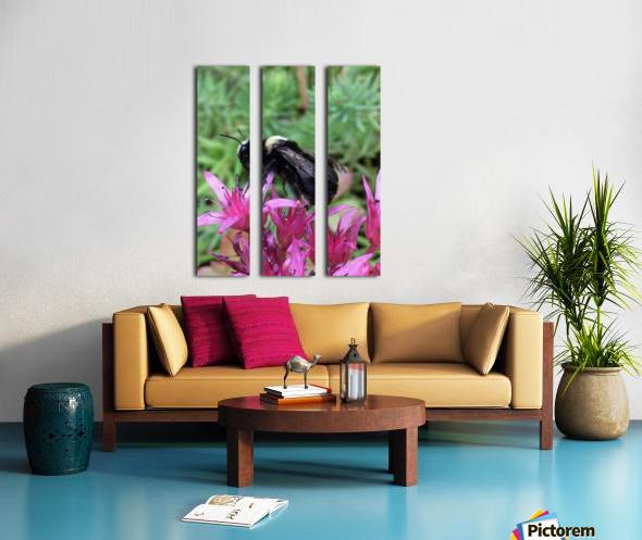 Black Bumble Bee Split Canvas print