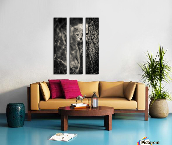 Shy but Curious Split Canvas print