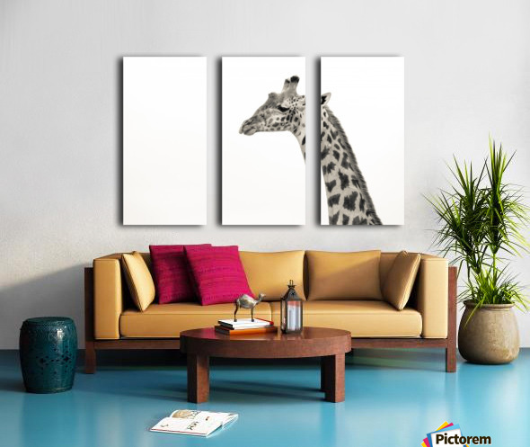 Stand Tall Split Canvas print