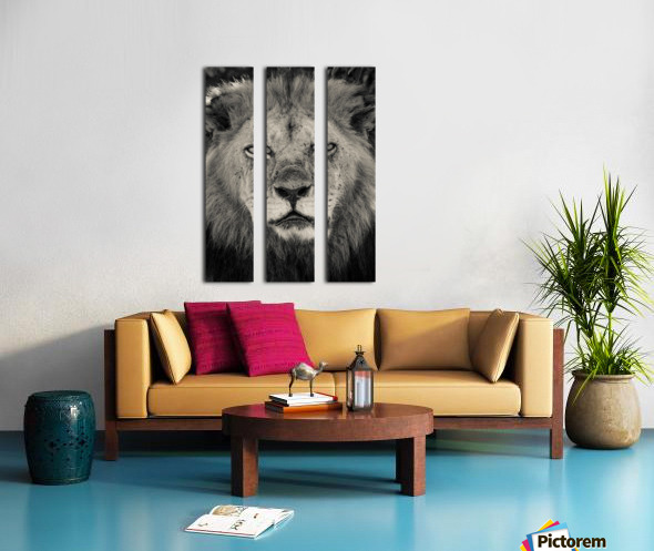 The King of South Africa - 2 Split Canvas print