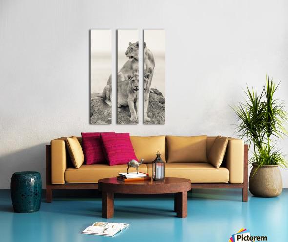 Mothers Split Canvas print
