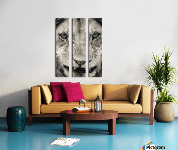 Grrrr Split Canvas print