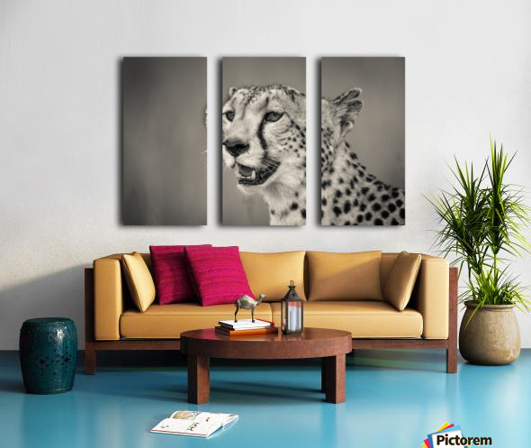 Cheetah Portrait Split Canvas print