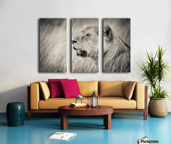 The Queen Split Canvas print