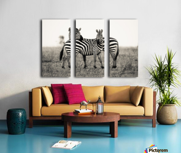 DUO Split Canvas print