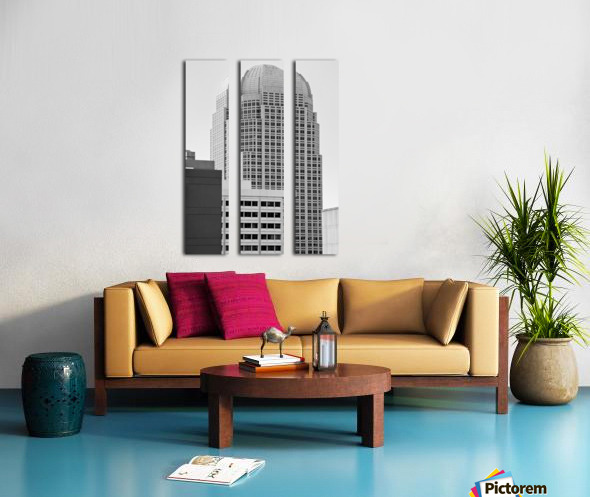 Rosebud In The City Split Canvas print