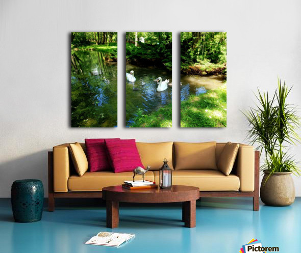 swan 6 Split Canvas print