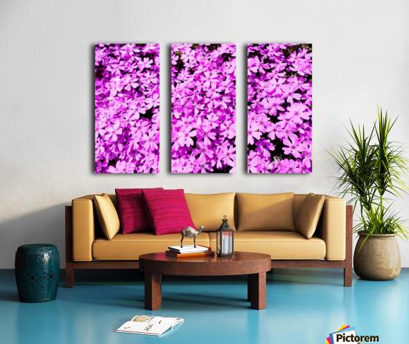 Pink Petals Split Canvas print