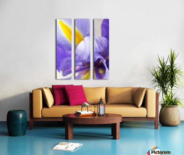 Inner Iris Split Canvas print