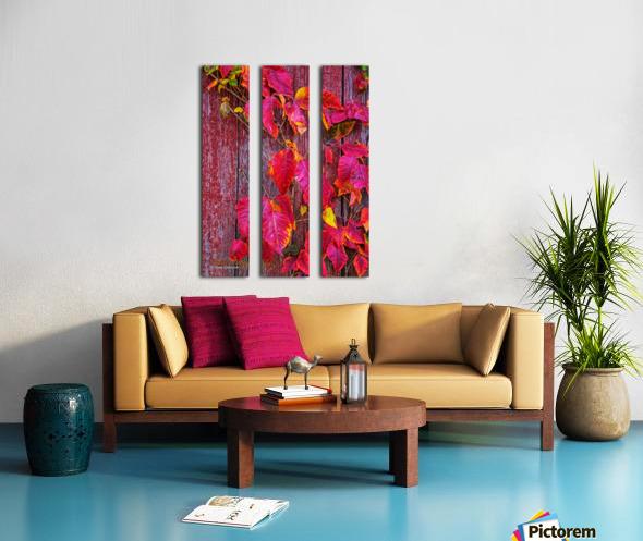 Poison Ivy - AP 3160 Split Canvas print