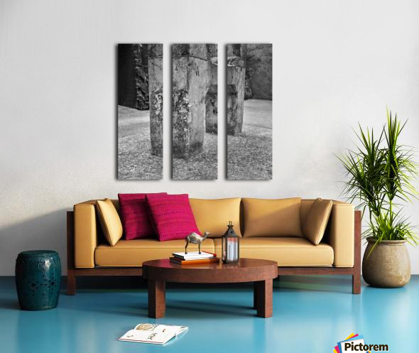 Winston Salem 101 Split Canvas print