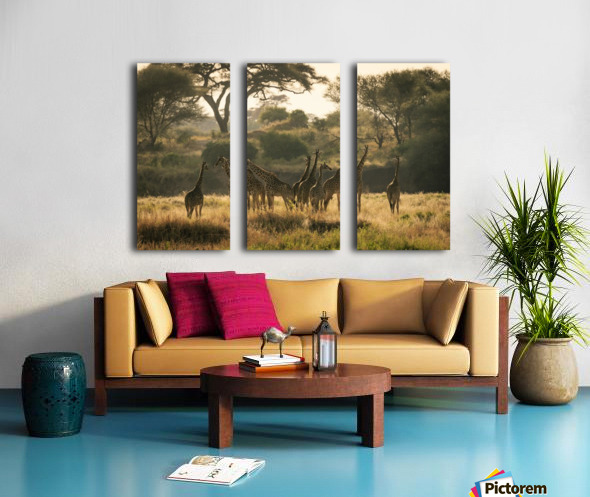 _49R8818 Split Canvas print