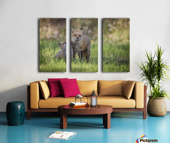_T8C7860 Split Canvas print