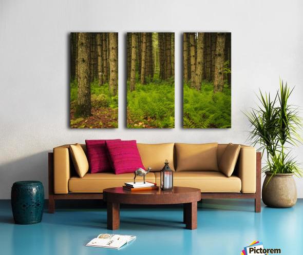 _S9A1813 Modifier Split Canvas print