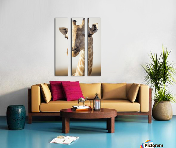 164A0098 Split Canvas print