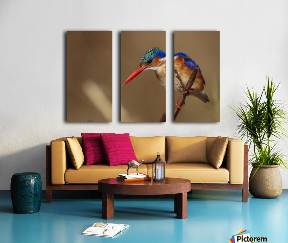 164A1043 Split Canvas print