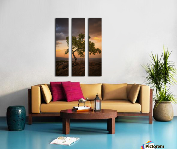 Tree of Life Split Canvas print