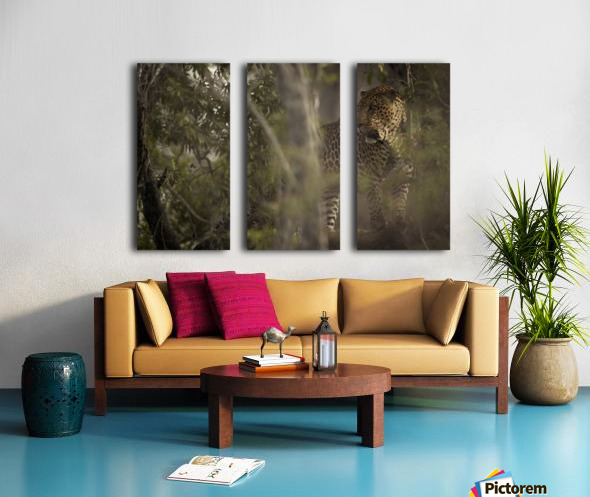 Ghosts of the Serengeti Split Canvas print