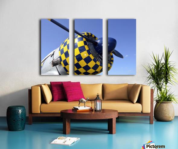stk105465m Split Canvas print