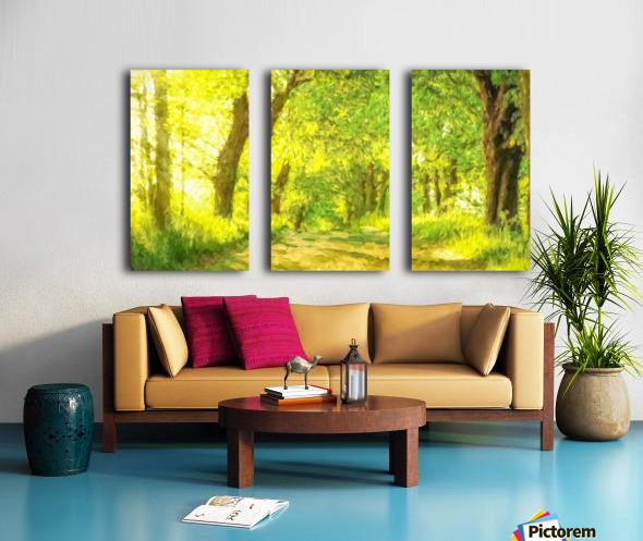 Walk in the Woods Split Canvas print
