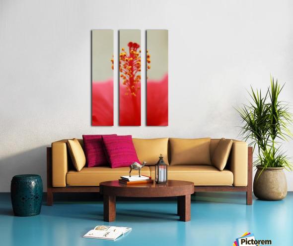 Hibiscus detail Split Canvas print