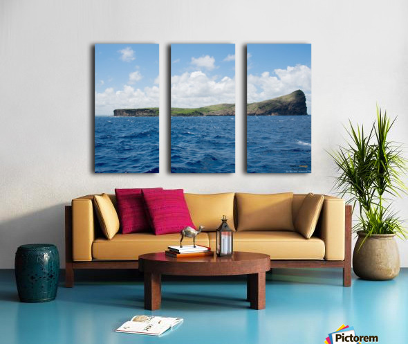 1 52 Split Canvas print