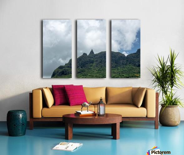 1 89 Split Canvas print