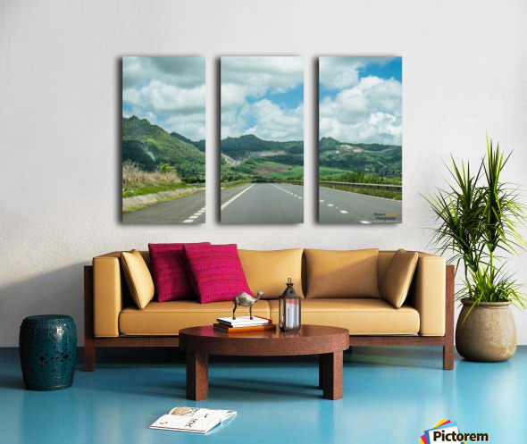 1 151 Split Canvas print