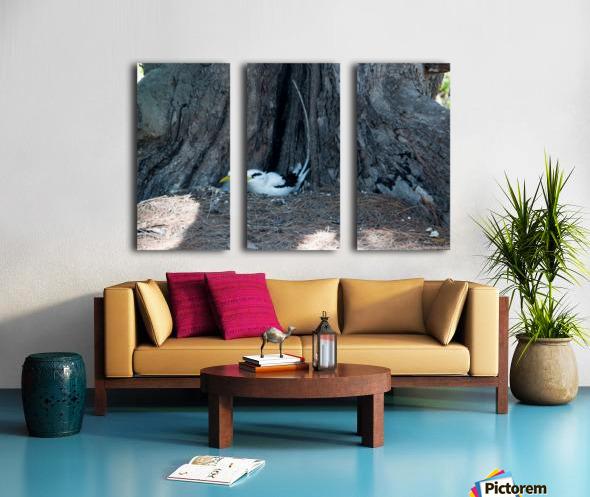 1 90 Split Canvas print