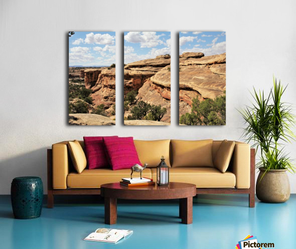 Canyonlands Split Canvas print