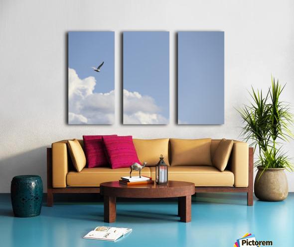 IMG_0245 Split Canvas print