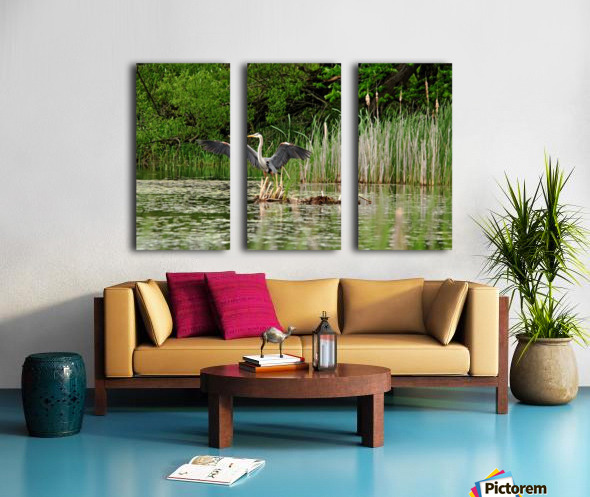 Great Blue Heron Landing Split Canvas print