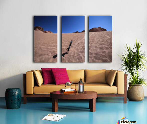 Sandboard Split Canvas print