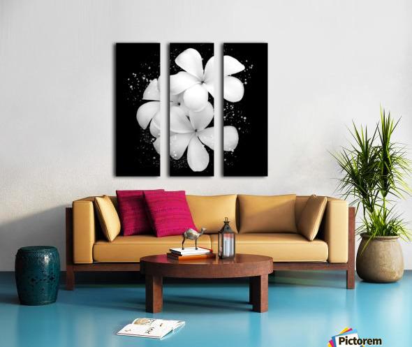 White Petunias  Split Canvas print