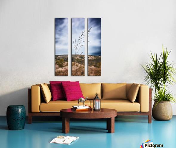 Sleeping Bear Dunes Split Canvas print