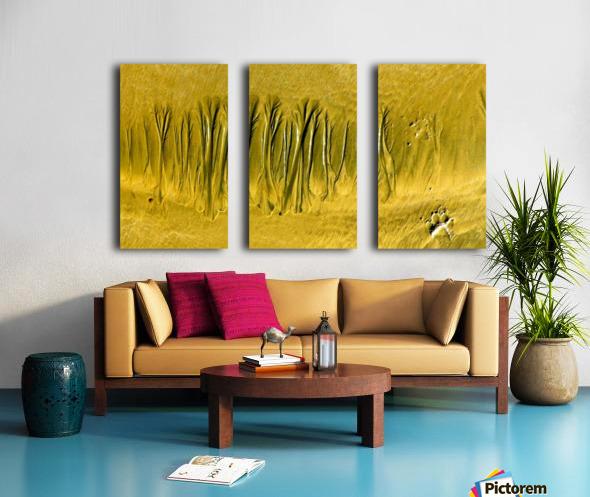 20180917_213707 Split Canvas print