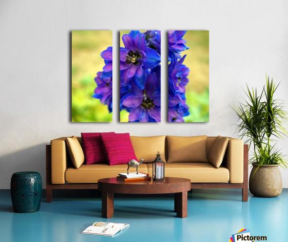 Purple And Blue Split Canvas print