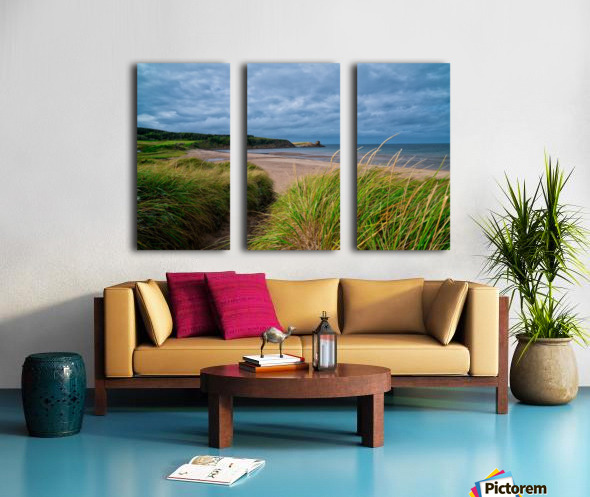 Sand and Grass Split Canvas print