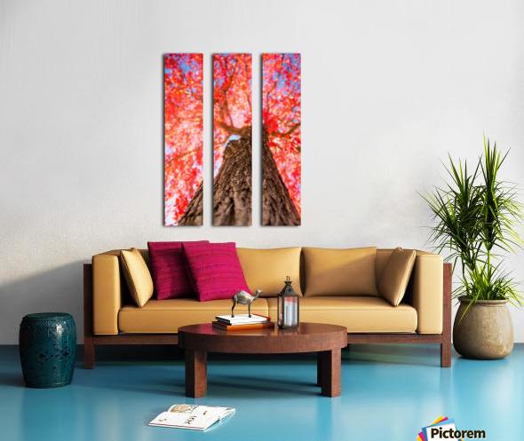 THE RED TREE Split Canvas print
