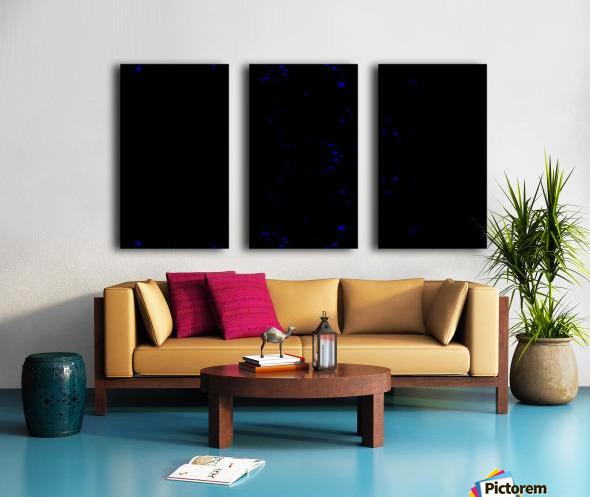 1539516243037_1539530365.81 Split Canvas print