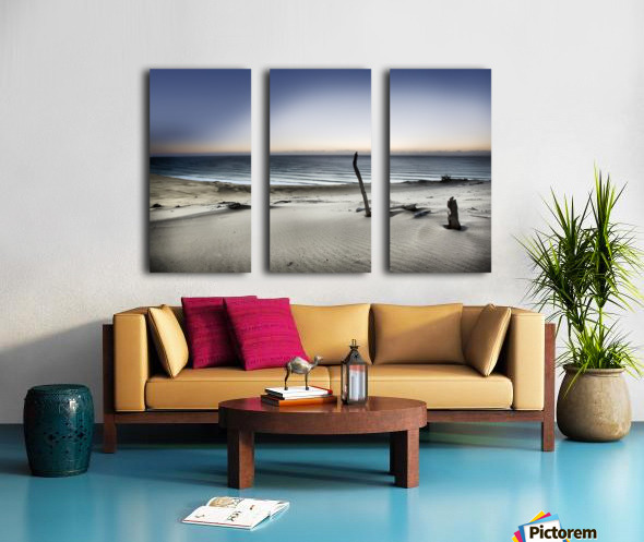 Reach for the sun Split Canvas print