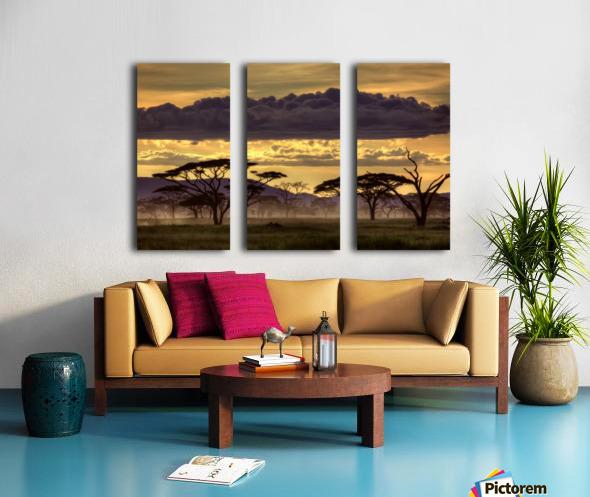 Good evening tanazania Split Canvas print