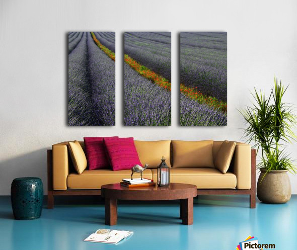 Red line Split Canvas print