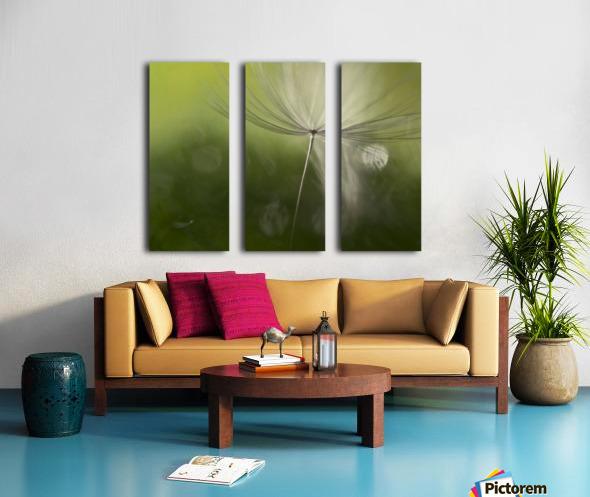Shadows in the green Split Canvas print