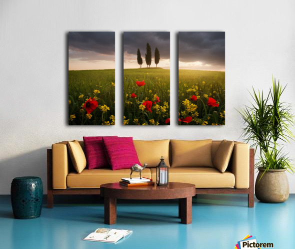 Blooming Tuscany Split Canvas print