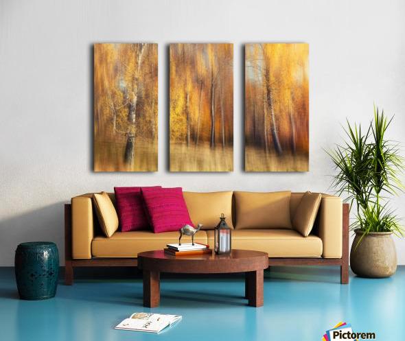 Autumn Birches Split Canvas print